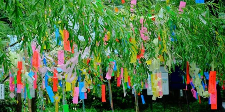 Lễ hội Tanabana 7/7 của Nhật như thế nào ?