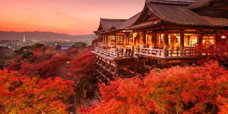 Rung động trước cảnh đẹp của Nhật Bản vào mùa lá đỏ